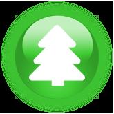 Kerstboomverbr